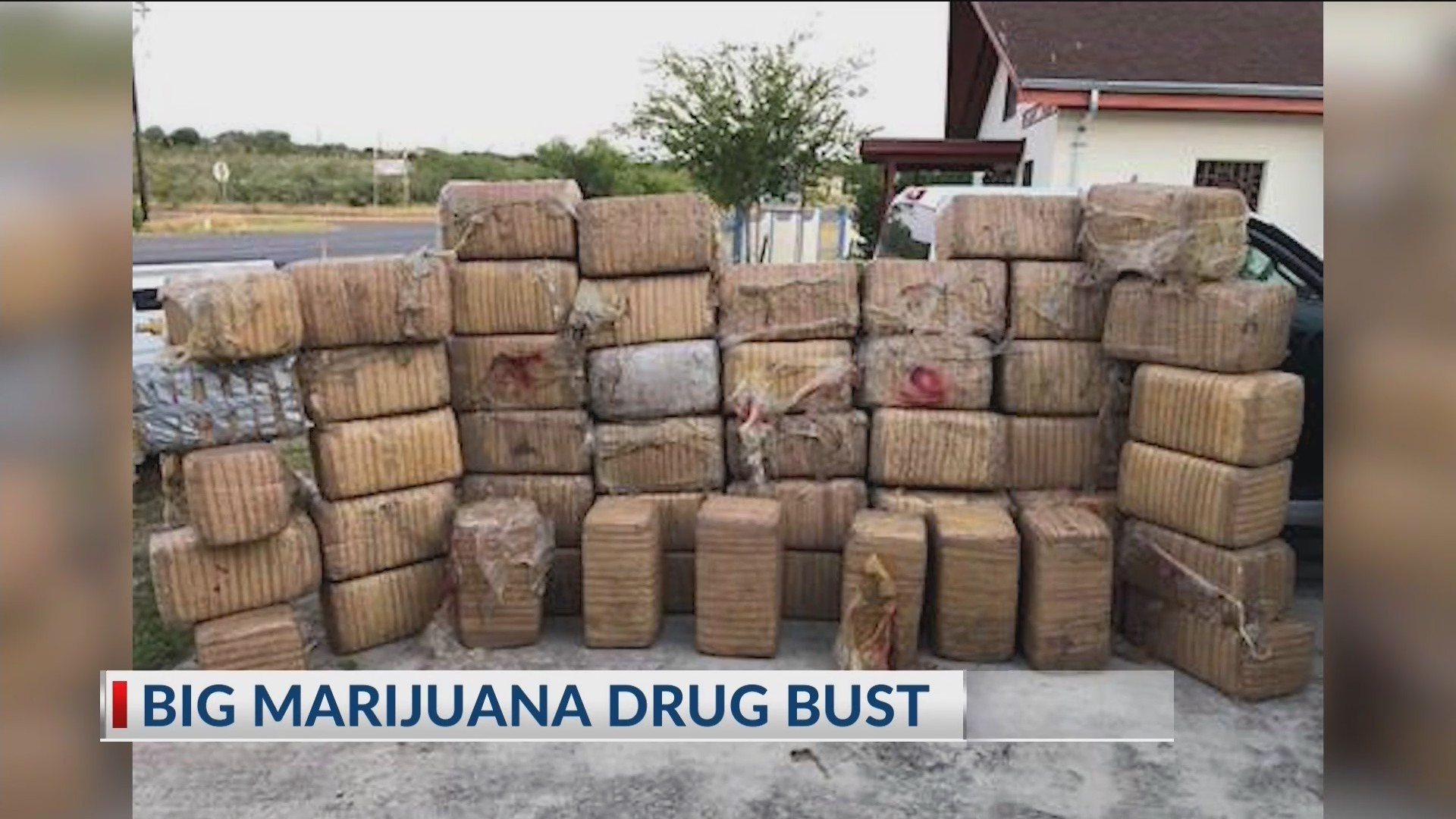 Big marijuana drug bust | KVEO-TV