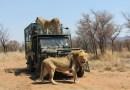 Marakele Animal Sanctury