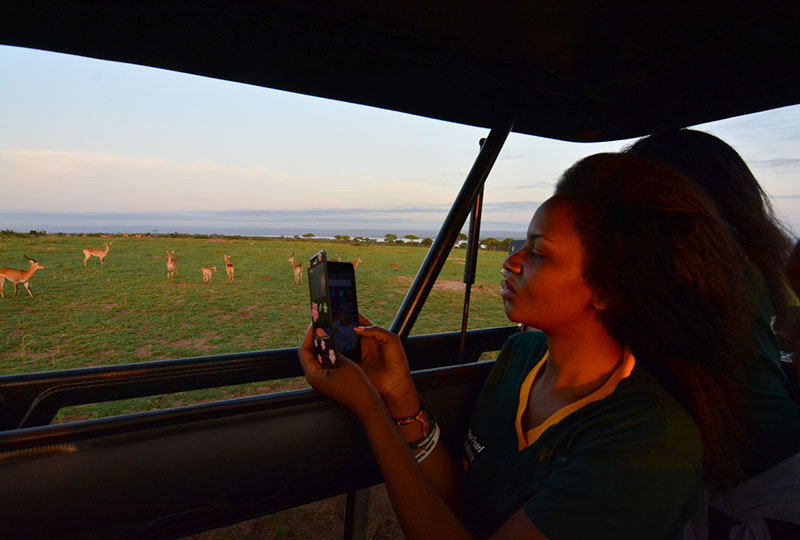 Tourist on a game drive in the Murchison Falls National Park, Uganda-travel with Kwezi Outdoors