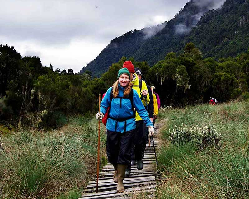 Hikers-in-Rwenzor+Uganda+travel_with+Kwezi+Outdoors
