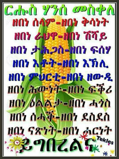 habesha new year