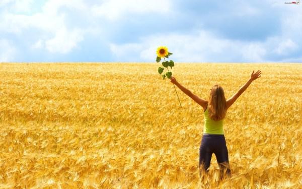 Pole, Zboże, Dziewczyna, Słonecznik - Zdjęcia