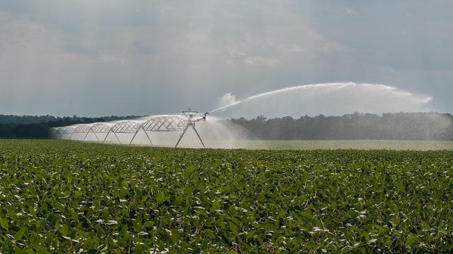 Agriculture, irrigation, field_133164