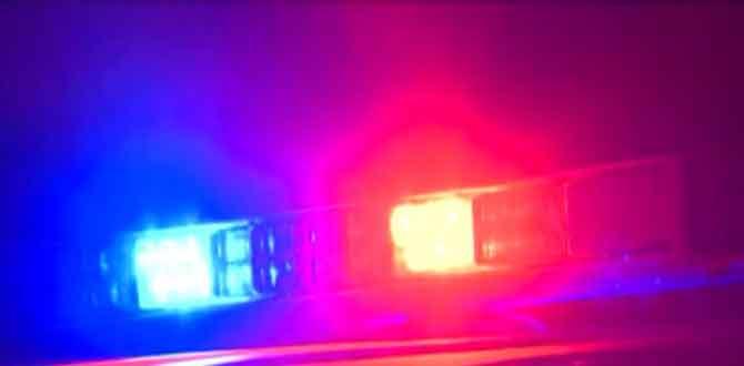 Police lights overnight incident_115015