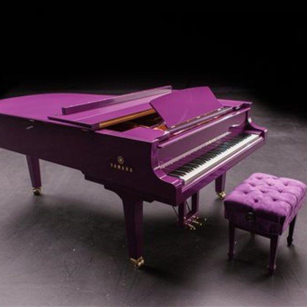 Prince-Purple Piano_277059