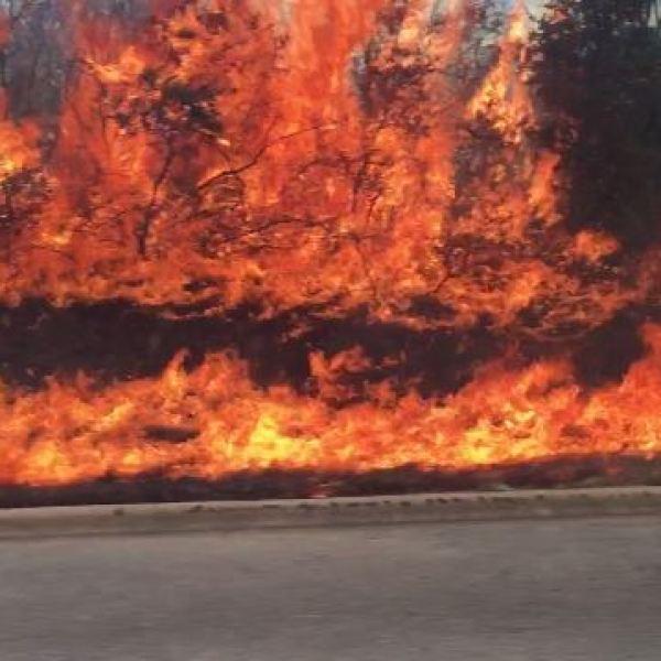 Brush fire near Barton Creek on MoPac service road_316442