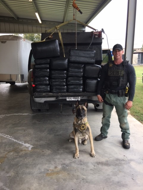 K9 Lobos and Sgt. Randy Thumann with 468 pounds of seized marijuana. Nov. 4, 2016_371627