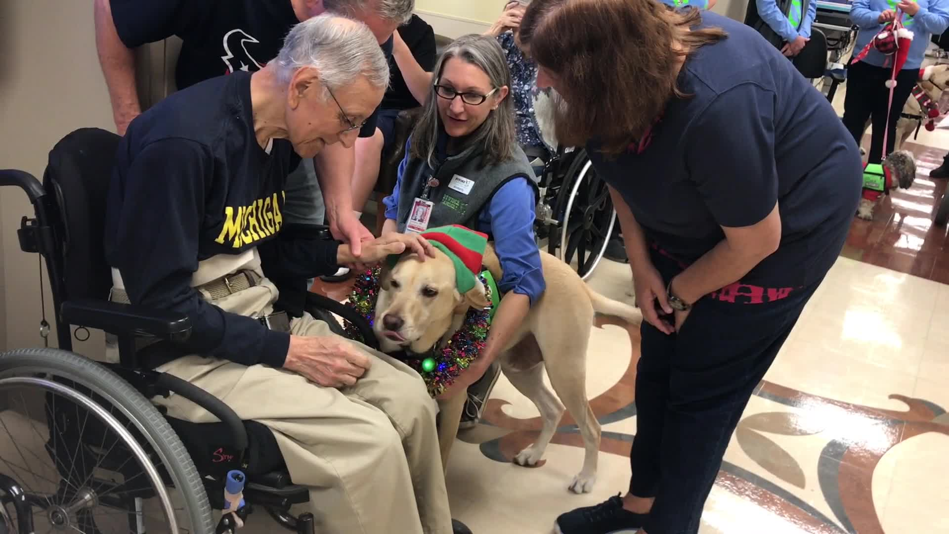 Therapy dog parade at St. David's Rehab on Dec. 21, 2017_601976