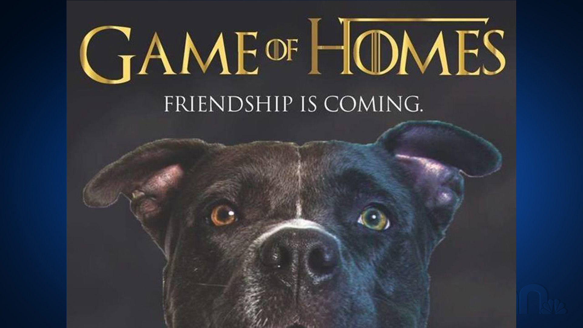 game of homes