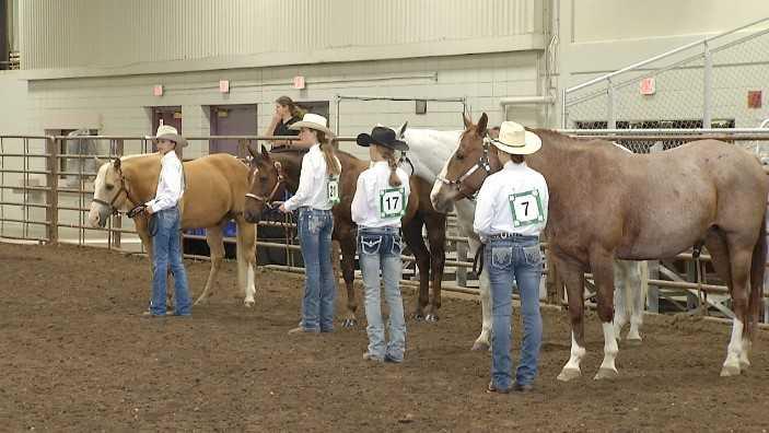 horse show WIDE_1529354641296.jpg.jpg