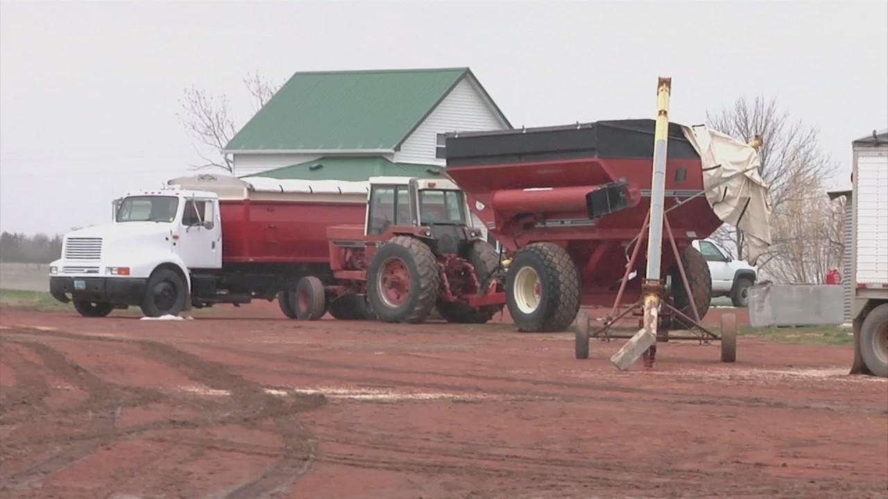 Family Farm Decline