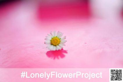 #LonelyFlowerProject