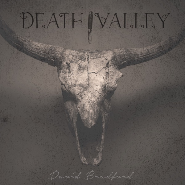 "Official cover art for David Bradford's single, ""Death Valley""."