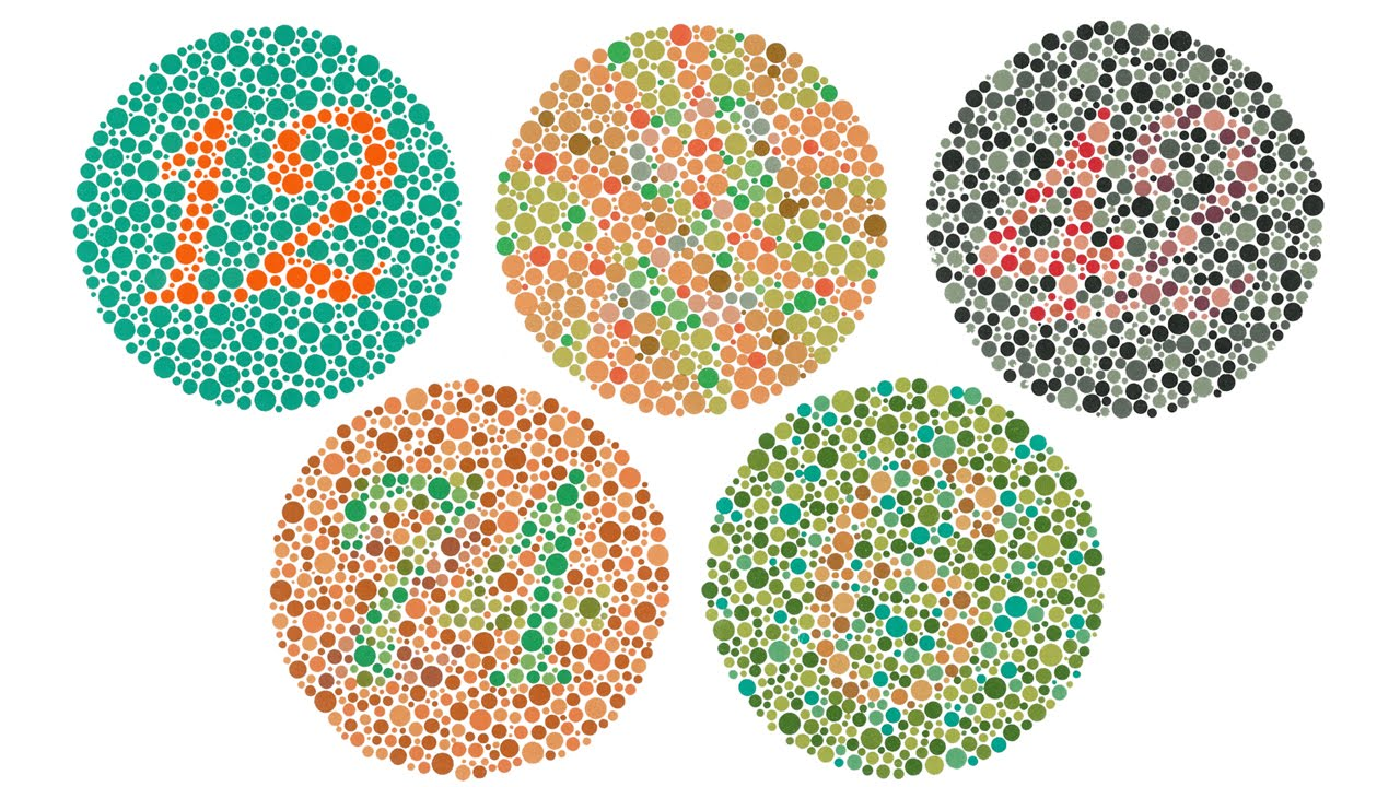 Watch video of colorblind man seeing color for first time