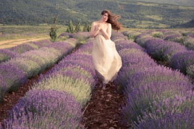 one of the benefits of lavender oil is it's help with hair loss