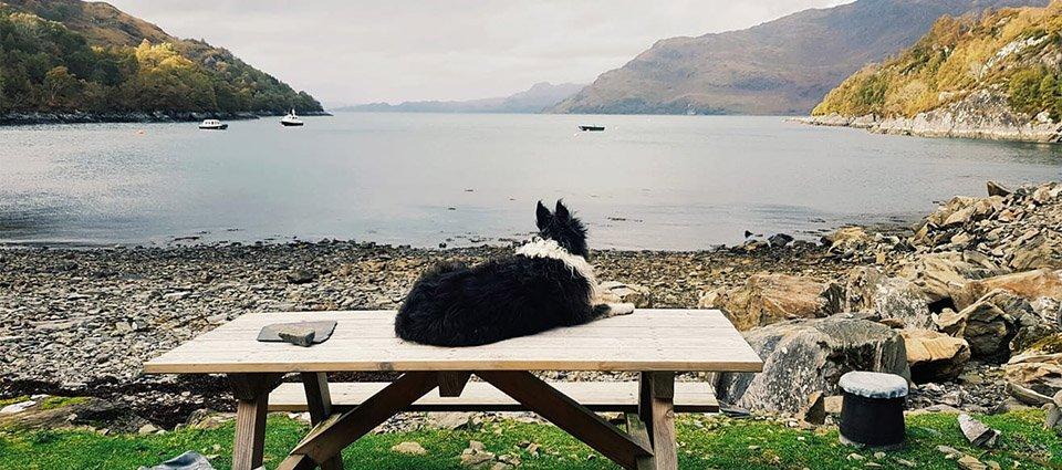 Knoydart Accommodation – Loch Nevis_0002_Loch_Nevis_Knoydart_Scenery (17)