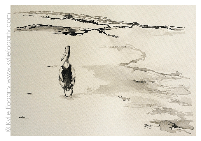 1 Pelican