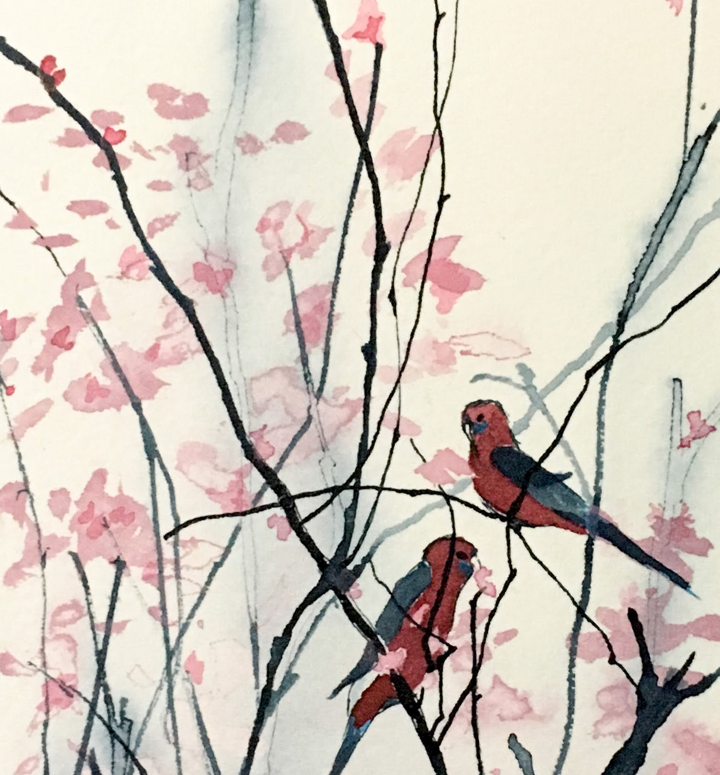 Birds and Blossoms, pigmented ink drawing by Kylie Fogarty