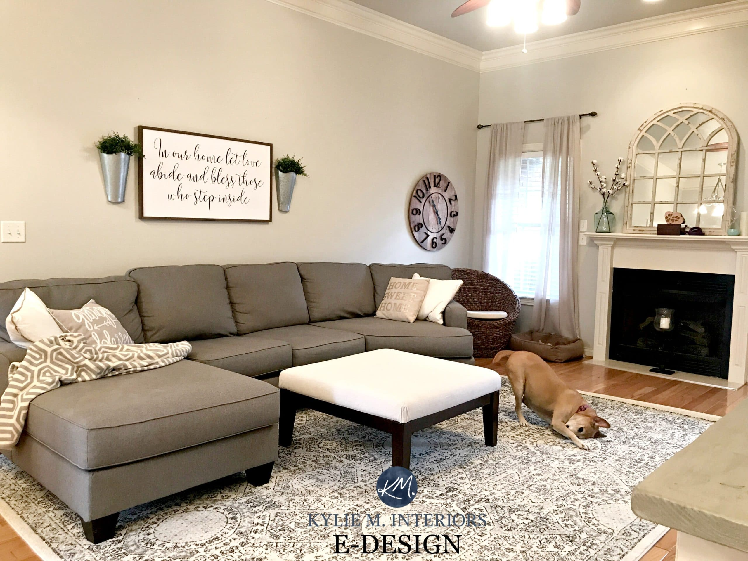 Sherwin Williams Agreeable Gray In Living Room With Gray Sectional Couch Area Rug Fireplace Mirror Kylie M E Design And Online Color Consulting
