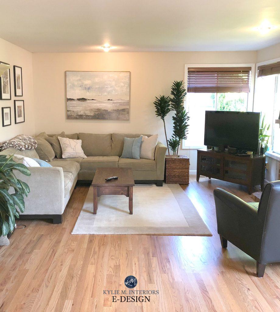 best beige neutral paint color sherwin williams canvas tan on best neutral paint colors for living room sherwin williams living room id=39965