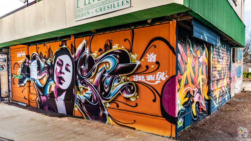 graffgresilles - kyonyxphoto-serie-graffiti-gresilles-5.jpg