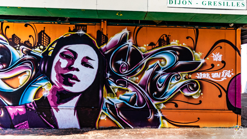 graffgresilles - kyonyxphoto-serie-graffiti-gresilles-6.jpg