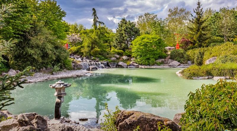 jardinjaponais - kyonyxphoto-serie-dijon-jardin-japonais-1.jpg