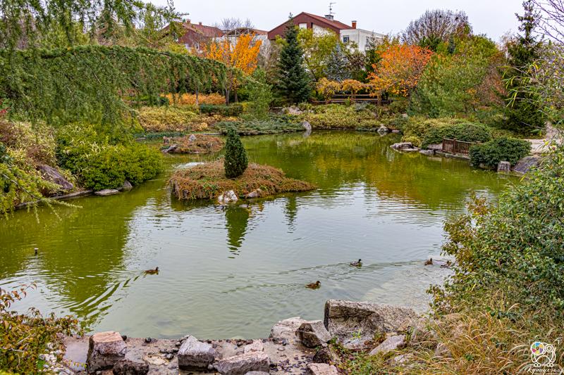 jardinjaponais - kyonyxphoto-series-dijon-jardin-japonais-14