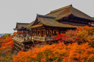 Kiyomizu Temple During the Autumn Season in Kyoto!