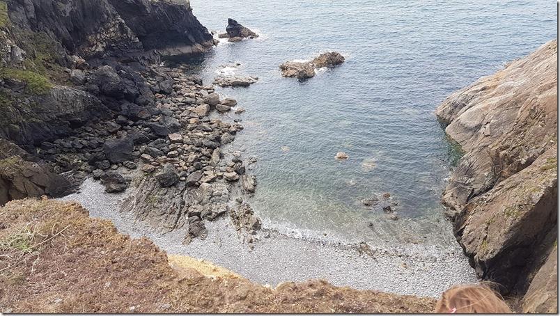 pembrokeshire coast beach full of seal pups