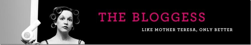 Bloggess header