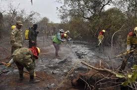 Bolivia-Ecological-disaster-as-Amazon-blazes-rage.jpg