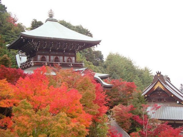 Daisho-in Temple in Autumn