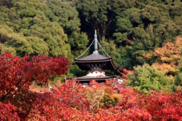 eikando_temple_kyoto
