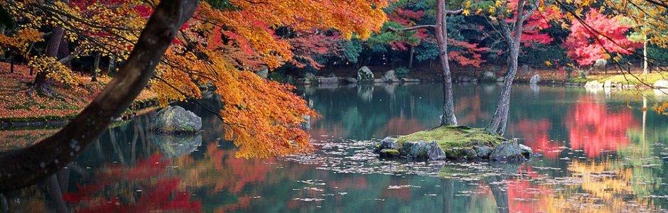 Autumn Leaves in Kyoto | Visit Kansai 2019