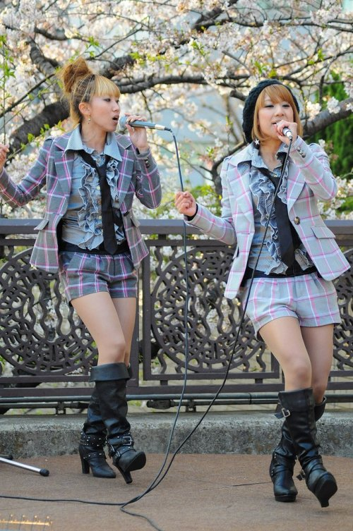 Hanami_Dancing_and_Singing_Iidabashi_Shinjuku_Tokyo