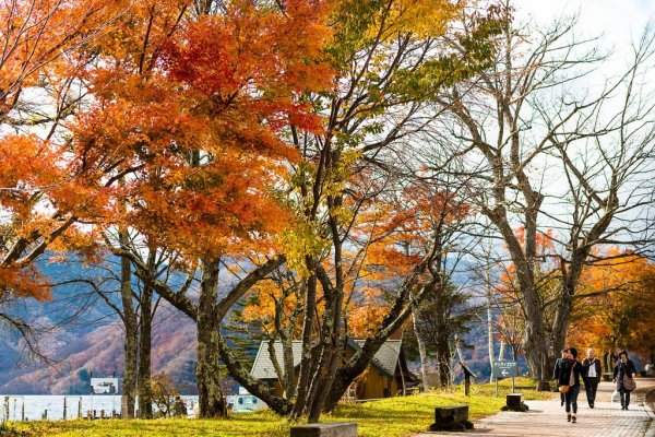 autumn_leaves_nikko_outdoor