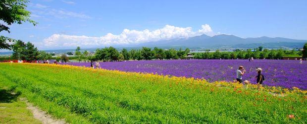 Best Scenic Byways in Hokkaido
