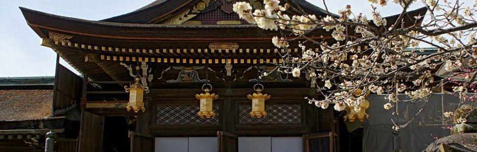 Plum Blossom Festival at Kitano Tenmangu Shrine