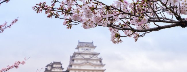 10 Beautiful Castles to Visit in Japan in Spring