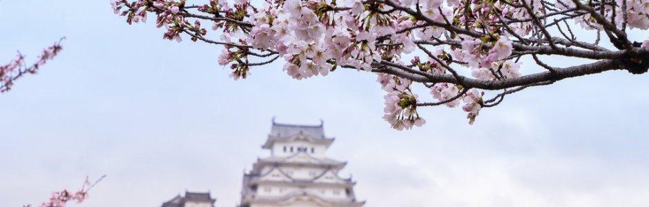 10 Beautiful Castles to Visit in Japan in Spring