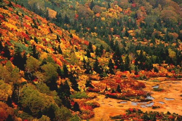 hakkoda_mountains_fall_colors
