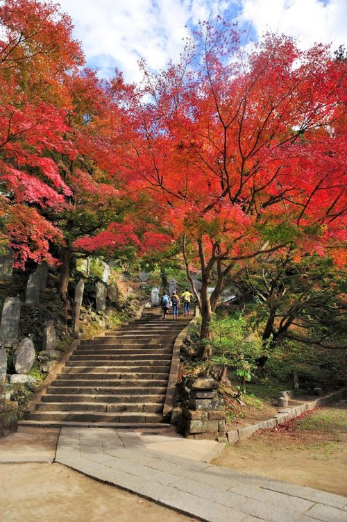 kenchoji_temple_fall_foliage