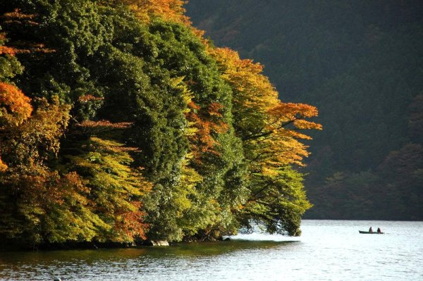 lake_ashi_fall_foliage