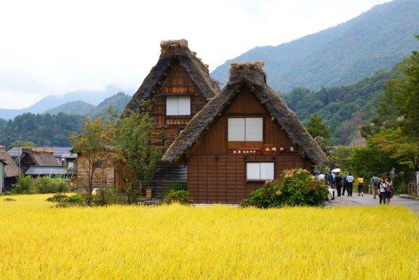 early_autumn_in_shirakawago_gifu