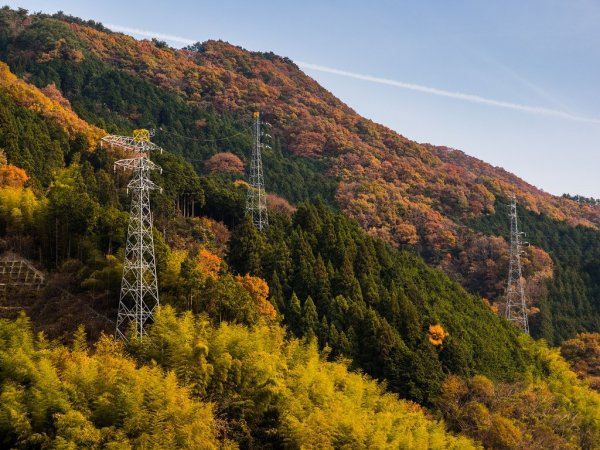 japanese_mountain_slope_in_autumn