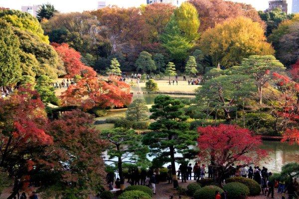 rikugien_garden_tokyo