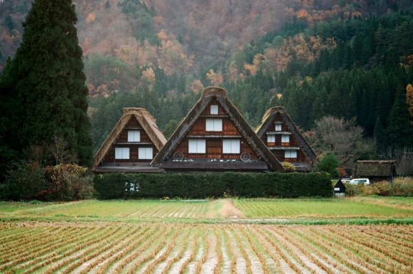 shirakawago_japanese_old_village_gifu