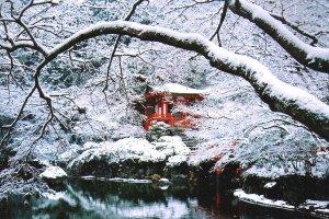 daigo_ji_temple_kyoto