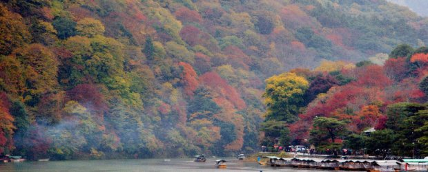1-Day Arashiyama Autumn Itinerary